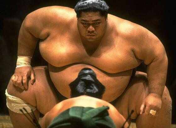 Sumo Wrestler - Big